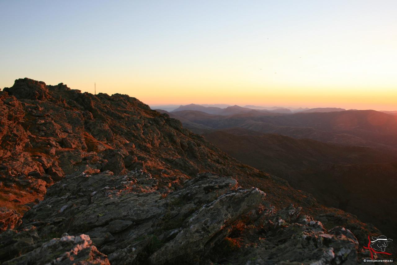 Still und menschenleer: der höchste Berg Sardiniens ist perfekt für eine Unternehmer-Auszeit