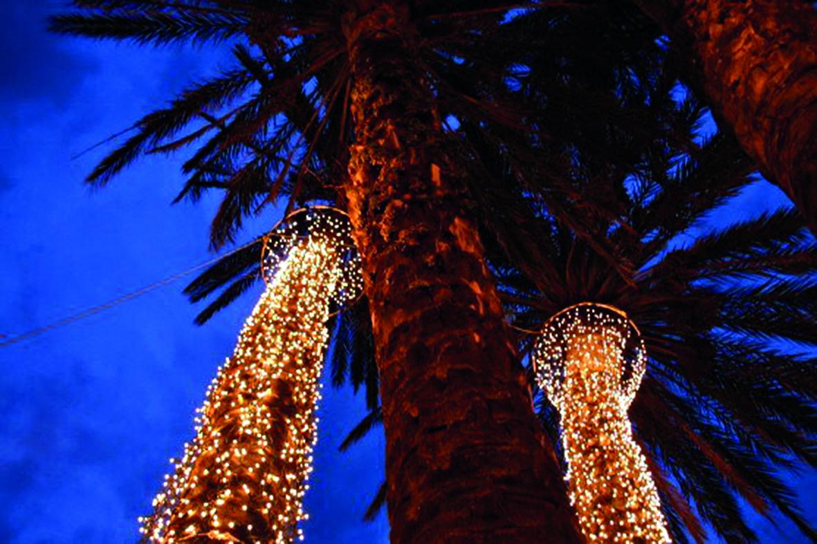 Weihnachtsfeier unter Palmen