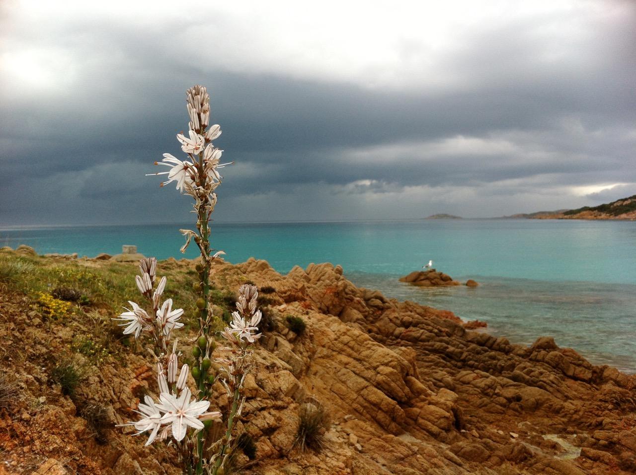 Sardinien ist auch im anrückenden Unwetter traumhaft schön!