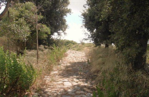 Einzelcoaching: Auswandern und Arbeiten in Sardinien