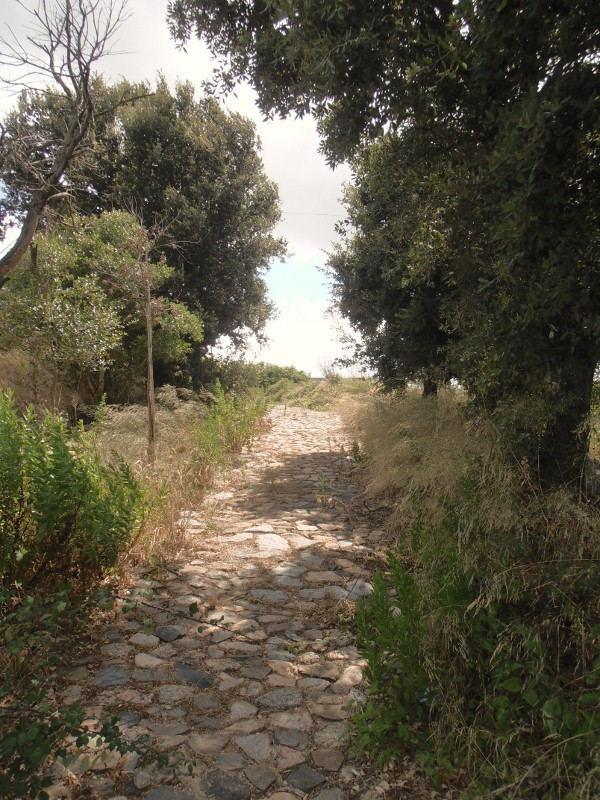 Finde und plane deinen eigenen Weg nach Sardinien oder in der Welt